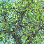 2004 letni strom 155x115cm